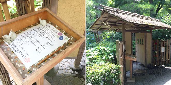 『北鎌倉あじさいさんぽ』 茶室・月笑軒